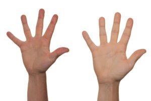 Zdjęcie przedstawia 2 dłonie wyciągnięte do góry.