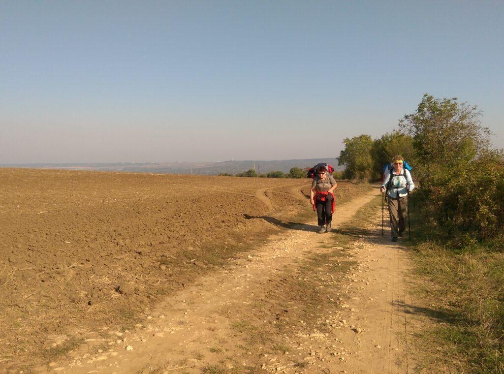 Zdjęcie przedstawia dwie osoby idące polną drogą.