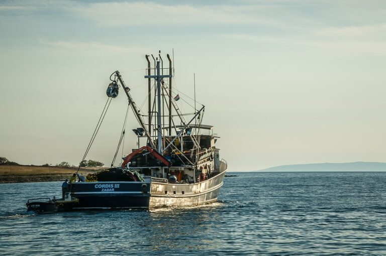 Łódź rybacka na morzu